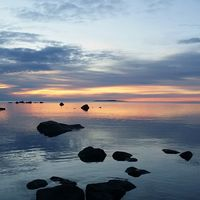 Sörfjärden Hälsingland 7/4 kring noll grader och ett fantastiskt fågelliv vid morgonens soluppgång