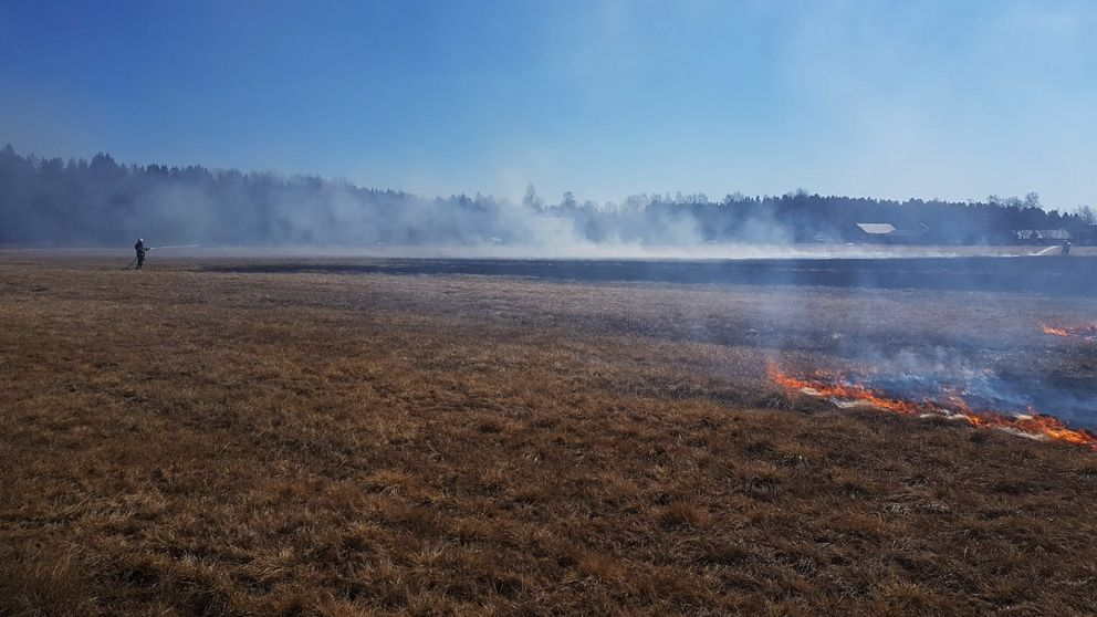 gräsbrand