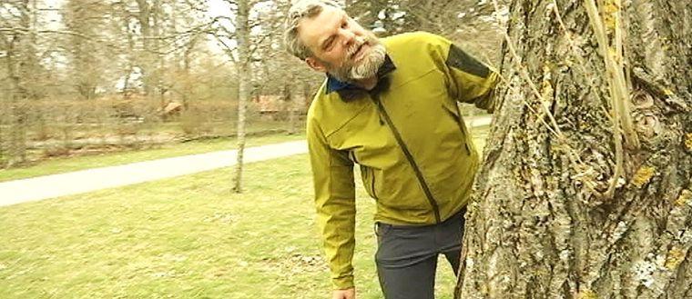 björn ström ordförande för Naturskyddsföreningen i Linköping
