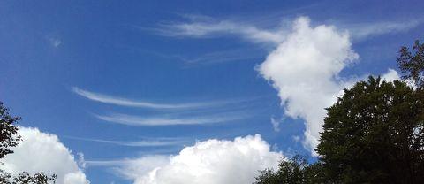 För en kort stund såg himlen ut så här över Gyllebo på Österlen idag 22 maj – bulliga cumulus och tunna penseldrag