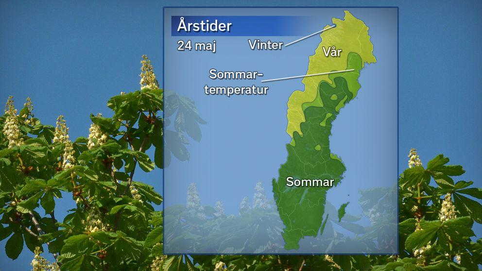 Årstidernas läge temperaturdygnet den 24 maj. Grönt betyder att sommaren anlänt (5 dygn över 10 grader), ljusgrönt betyder sommartemperatur i 1–4 dygn, gult betyder vår (7 dygn över 0 grader) och blått betyder vinter (under 0 grader).