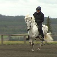 en tjej, och en person som rider islandshäst snabbt