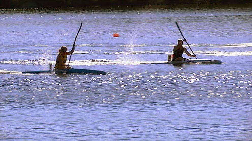 kanotister paddlar