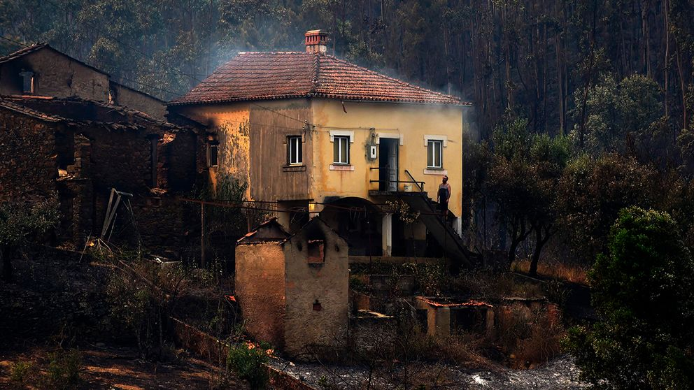 Enorma ytor med otaliga hus har totalförstörts – och räddningstjänsten räknar med att dödssiffran kommer att stiga markant när de börjar undersöka husen.
