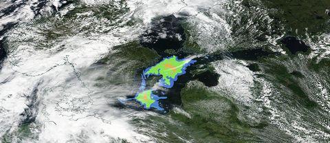 Här syns området (taget från en satellitbild) där algblomningen just nu är som mest utbredd via en färgkodad karta.