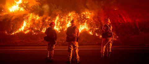 Tre brandmän övervakar branden i skogen.