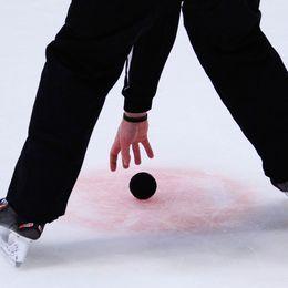 puck, ishockeydomare