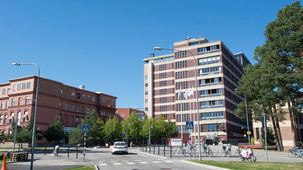exteriör på Gävle sjukhus sommaritd