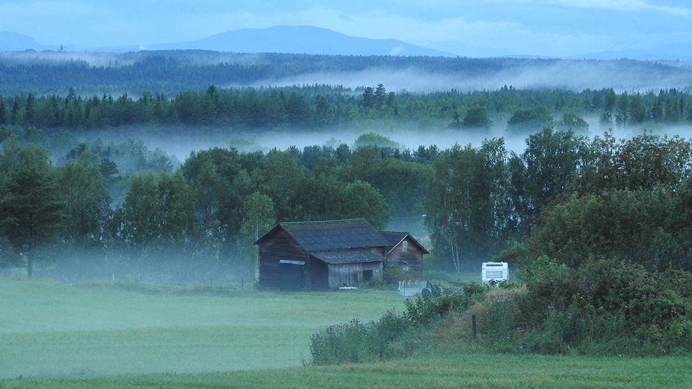 Sen kväll i Aspås, Jämtland, med massor av dimma.