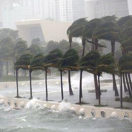 Orkanen Irma blåser in över Miami