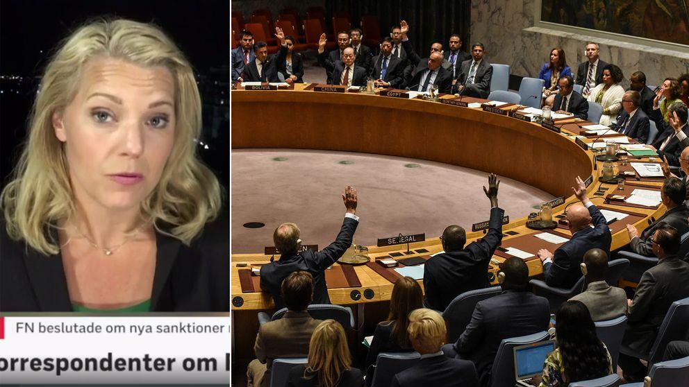 Carina Bergfeldt och FN.