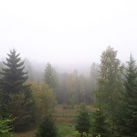 23 september kl. 11.00 ligger dimman tät över slätten väster om Billingen.