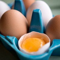 Livsmedelsverket ska analyseras svenska ägg efter giftskandalen i Nederländerna. Arkivbild.