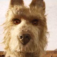 Som vanligt har den egensinnige Wes Anderson samlat sina favoritskådespelare till sin nya film. Men den här gången spelar de hundar.