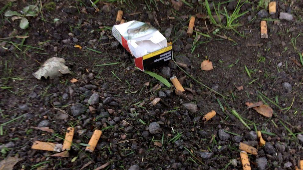 cigarettask och fimpar på marken