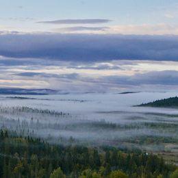 Dimslöjor i Tångeråsen i Jämtland den 11 september.