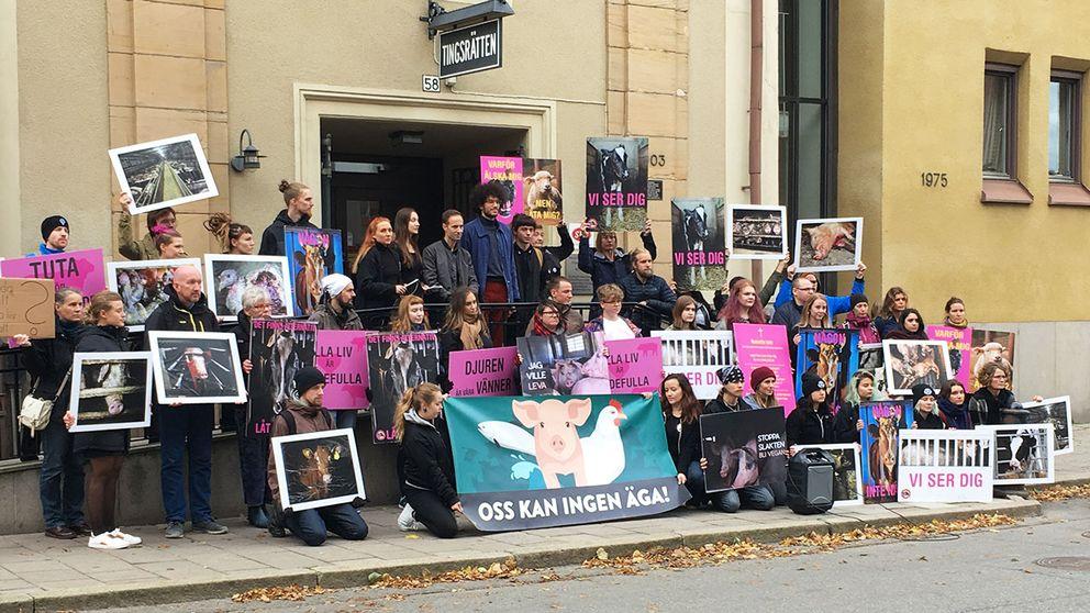 djurrättsaktivister tingsrätt norrköping manifestation