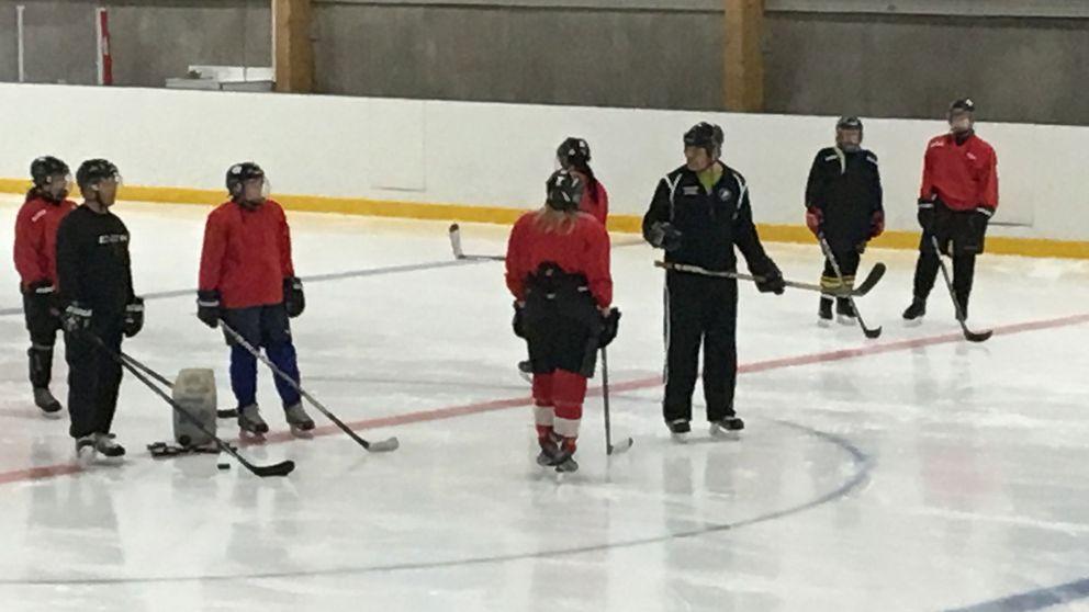 Örebros damlag i hockey