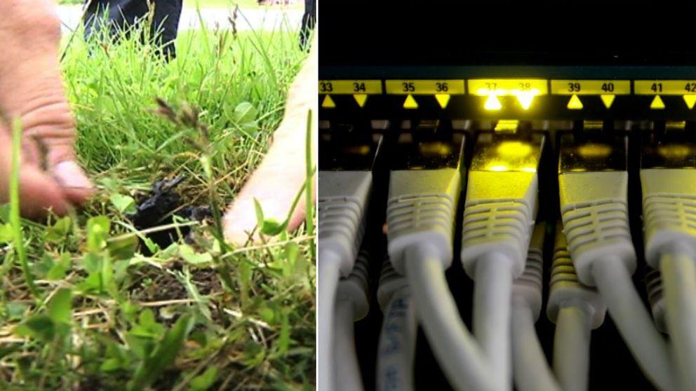 fiberkabel, nätverkskabel, bredband