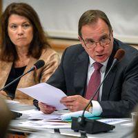 Statsministern i EU-nämnden