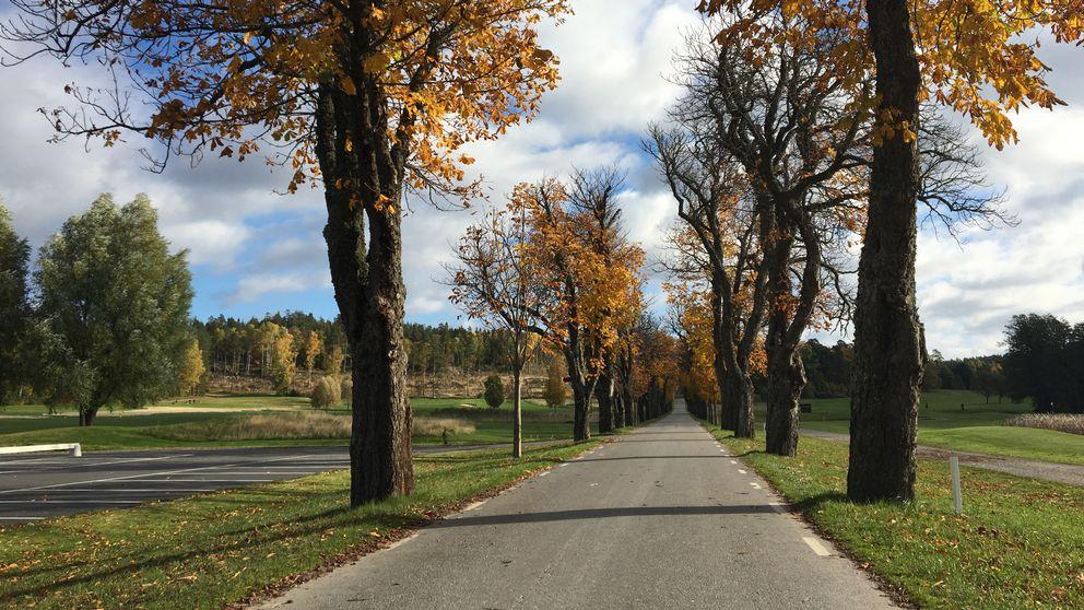 Högantorpsvägen i Salem och Södertälje kommun kan bli enskild väg