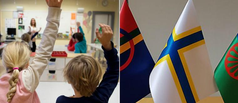 Europarådet pekar på brister i hur Sverige tar hand om sina nationella minoriteter.