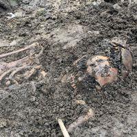 Ett 30-tal skelett ligger välbevarade utanför Allhelgonakyrkan i Lund.