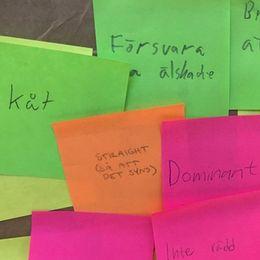 Pojkarnas post it-lappar med upplevde förväntningar kring maskulinitet: Kåt, dominant, straight och bra på att grilla är några av orden som skrivits upp.