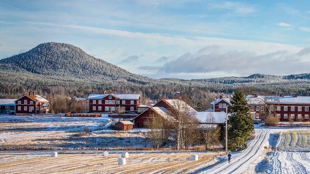 Nysnö och sol över vackra Järvsö i Hälsingland den 12 november.