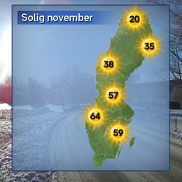 Soligast hittills i november