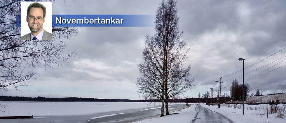 Ishalka i Ursviken utanför Skellefteå i Västerbotten den 24 november.