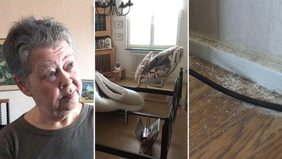Ingela, i ett hyreshus i Västerås, är förtvivlad över situationen med vägglöss som pågått i månader.