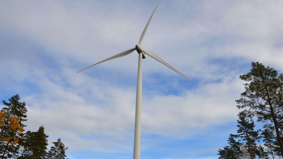 Vindkraftverk med skog i kanterna och molnig himmel.