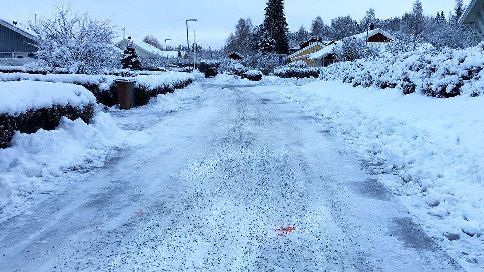 Polisen utreder nu mord efter att en person dödades under ett bråk i Falun.