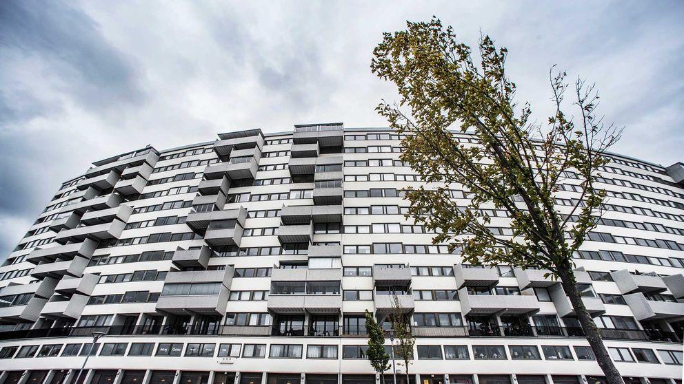 Hus med hundratals lägenheter mot blå himmel med lätta moln och ett träd i förgrunden.