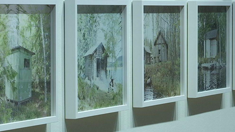 En bild på fyra fotografier av Agnes Thor.