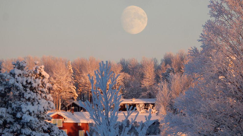 Månstaviken, Jämtland