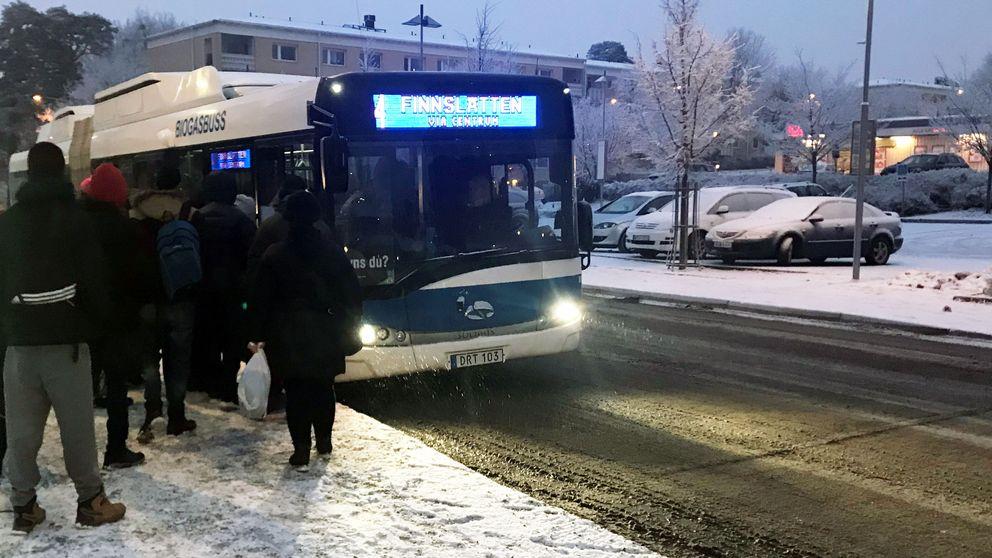 VL, buss, bussbiljett, kollektivtrafik