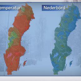 Till vänster: Temperaturavvikelse för perioden 1 dec till 16 jan. Ju rödare fält desto större avvikelse. Grön betyder normalt och blå kallare än normalt.  Till höger: Nederbördsavvikelse (smält form) för samma period. Lättare blå är minst normal nederbördsmängd, mörkare blå upp till dubbla nederbördsmängden. Gröna områden betyder något torrare än normalt. Referensperiod: 1961-1990