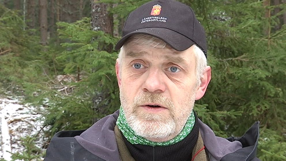 Anders Hedström, rovdjursspanare Länsstyrelsen Östergötland.