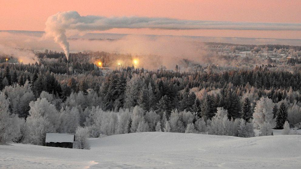 Aspås omgiven av en skog med träd med rimfrost och röken från en fabrik avtecknar sig mot en rosa himmel.