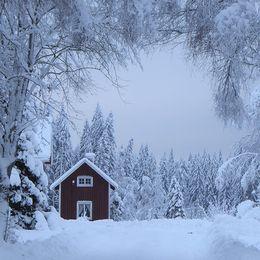 Julkänslan finns kvar i Spelnäs norr om Sunne i Värmland 22 januari med 2 minusgrader och ett snödjup på 50 cm.