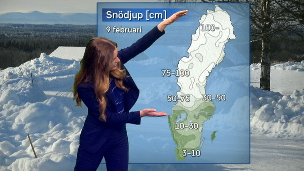 SVT:s meteorolog Tora Tomasdottir: Så här stor del av Sverige har mycket snö