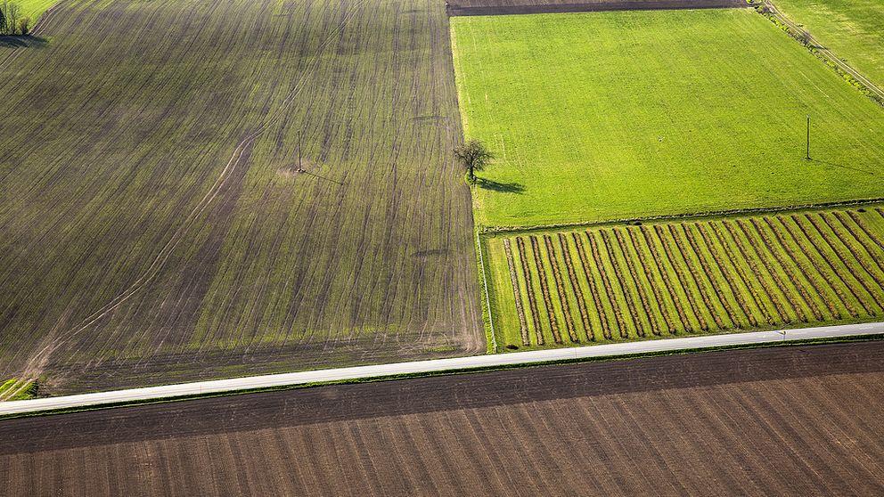 Priset på åkermark har ökat i Södertälje.