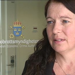anna lander kammaråklagare linköping