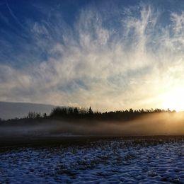 Täby. Morgondimma med solstrimma 17/2