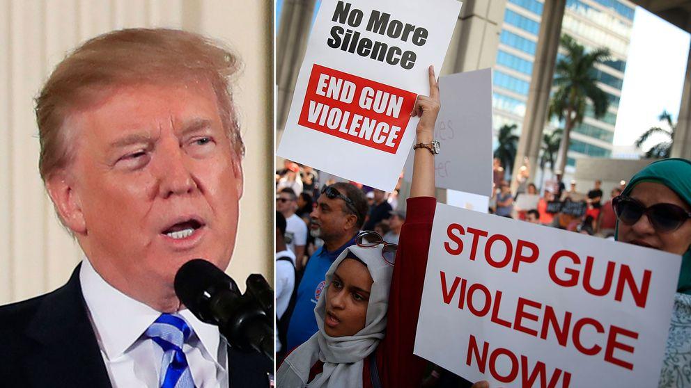 Donald Trump och demonstranter mot vapenvåld