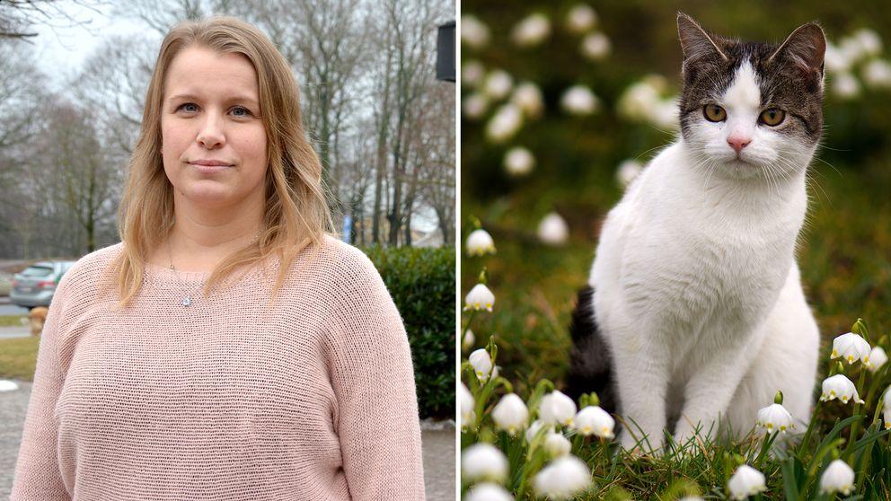 Kollage. Kvinna och katt.