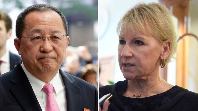 Nordkoreas utrikesminister landar i stockholm i dag