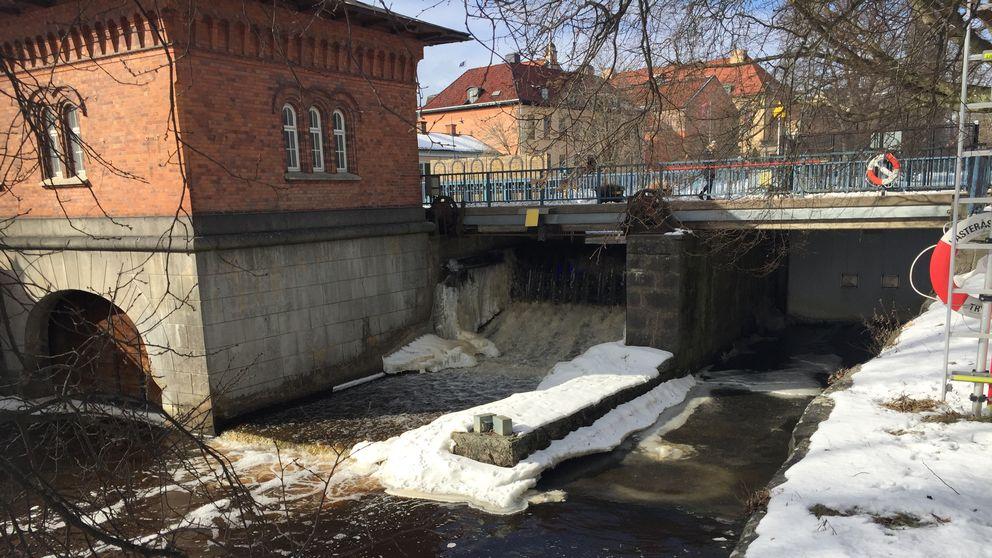 Ny fisktrappa ska byggas med start i sommar